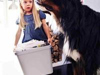 Segregacja odpadow kosze na smieci IKEA-RATIONELL segregowanie odpadow 4